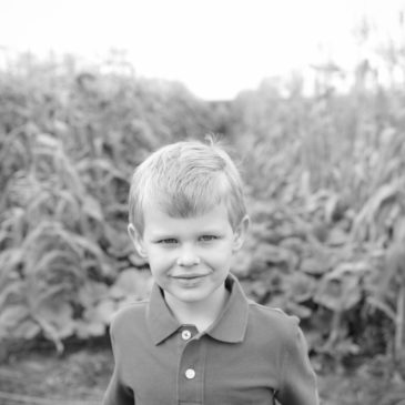 Family Photos on the farm with a gorgeous red barn, water and fields | Park Rapids, MN Family and Children Photographer