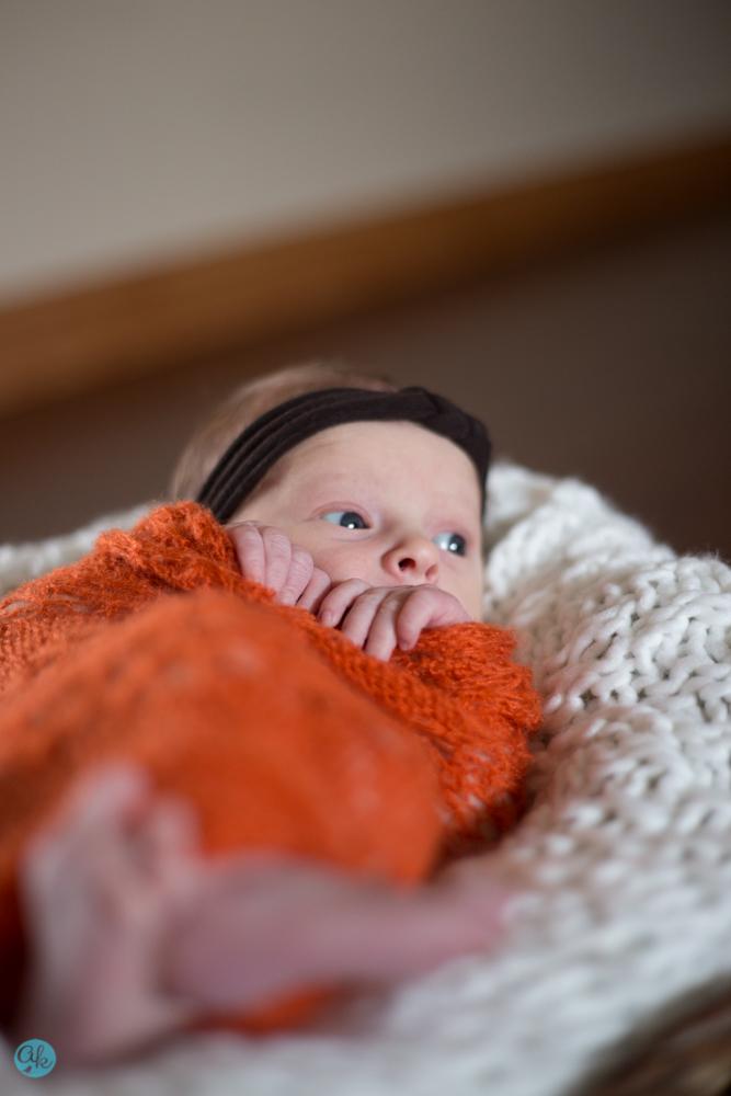Minnesota Newborn Photographer